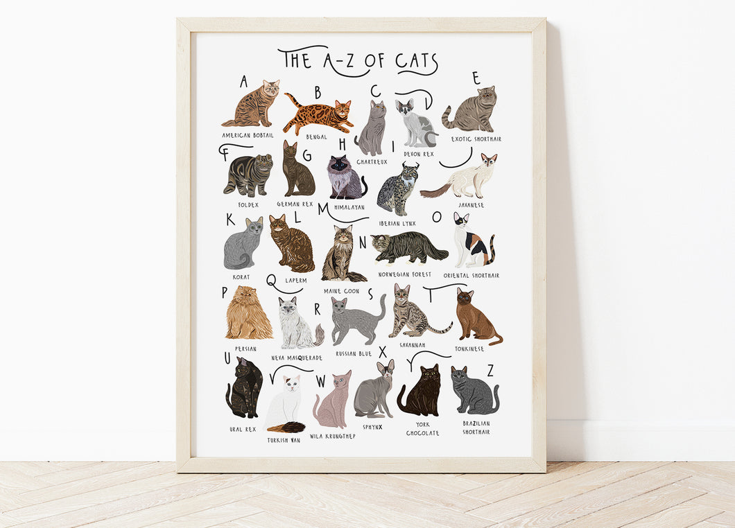 A-Z of Cats Poster