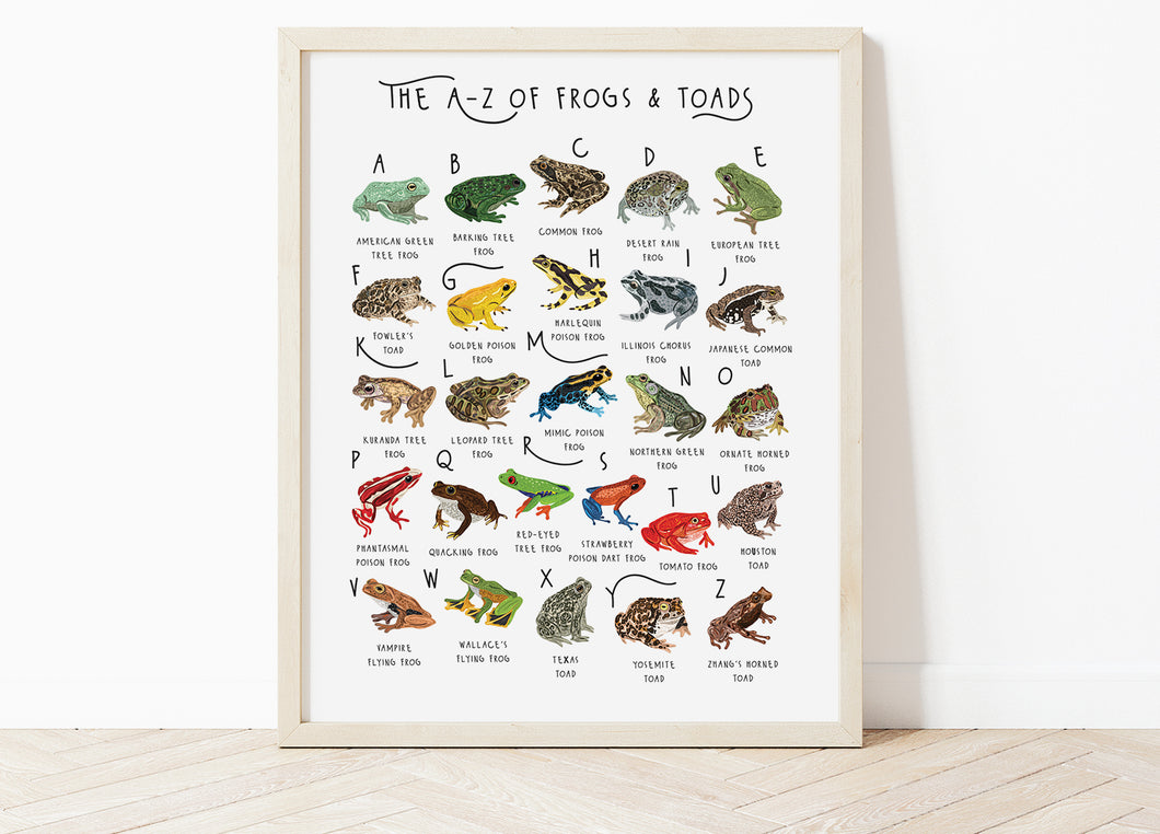 A-Z of Frogs Poster