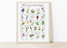 Load image into Gallery viewer, A-Z of Wildflowers Poster