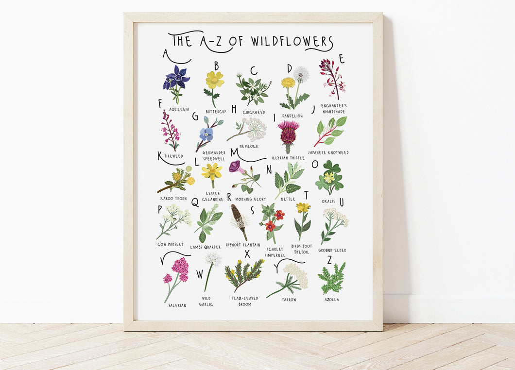 A-Z of Wildflowers Poster