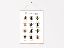 Load image into Gallery viewer, Great British Bees Print