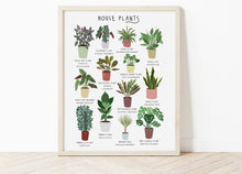Load image into Gallery viewer, House Plants Print