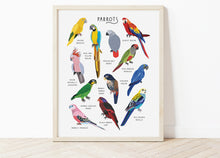 Load image into Gallery viewer, Parrots Print
