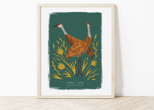 Load image into Gallery viewer, Sandhill Crane Print