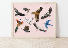 Load image into Gallery viewer, Soaring Birds Print