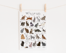 Load image into Gallery viewer, A-Z of Cats Poster