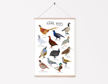 Load image into Gallery viewer, British Game Birds Print