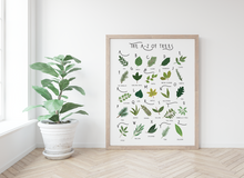 Load image into Gallery viewer, A-Z of Trees Poster