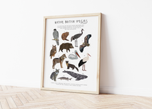 Load image into Gallery viewer, British Native Species Print