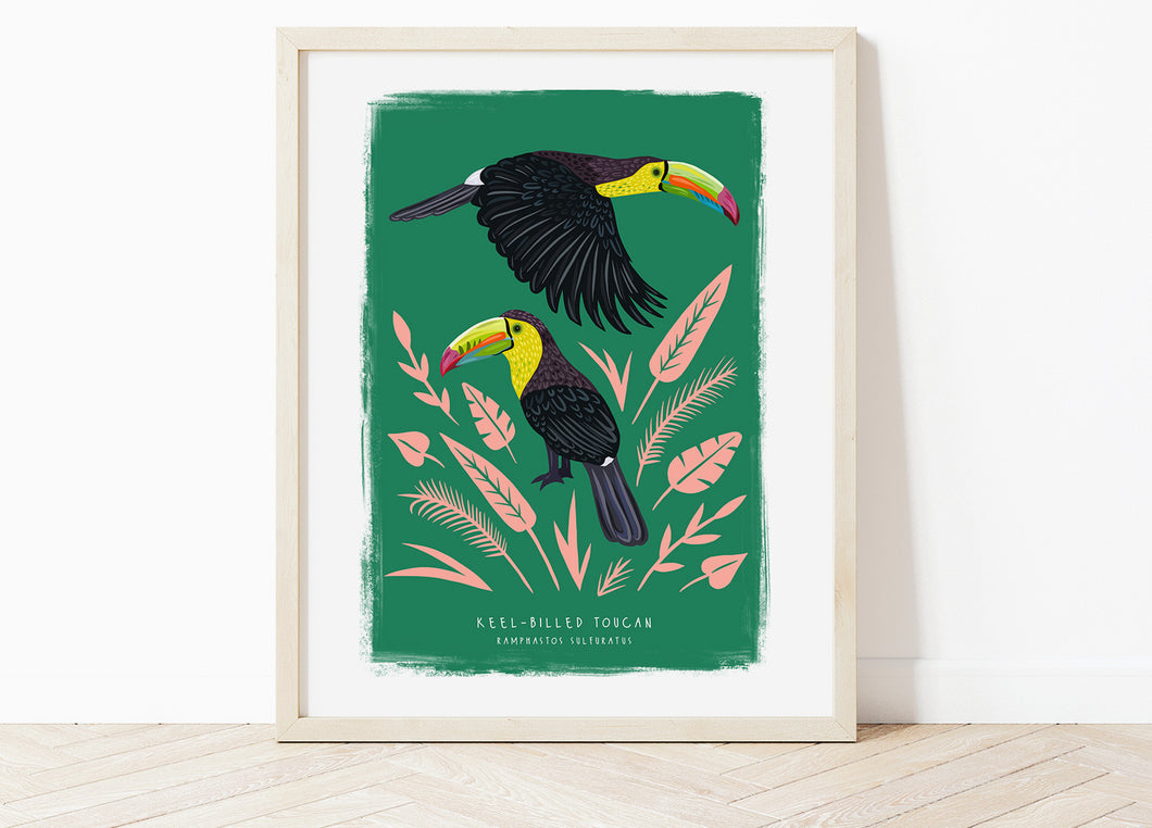 Keel-Billed Toucan Print
