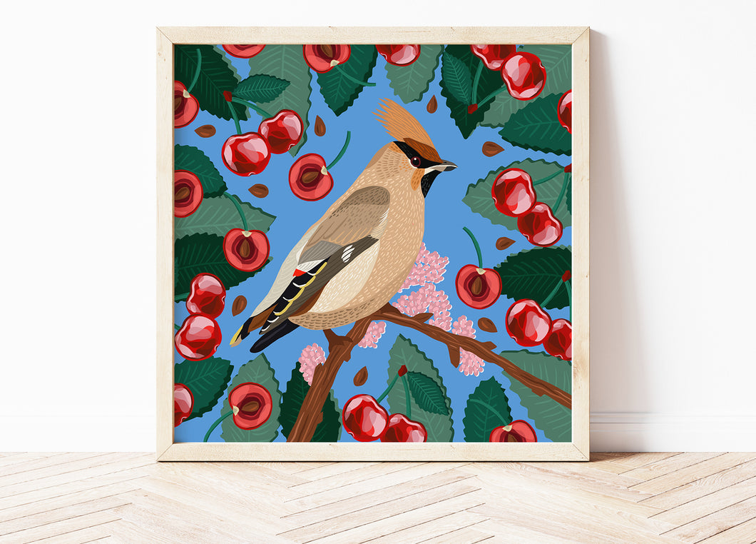 Waxwing and Cherries Print