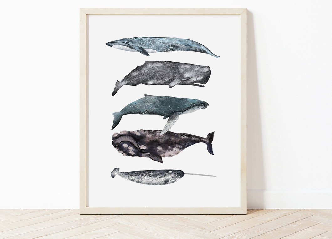 Whales Stack Print