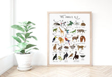 Load image into Gallery viewer, A-Z Jungle Poster