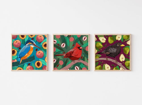 Mix and Match Any 3 Bird and Fruit Prints