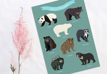 Load image into Gallery viewer, Bears of the World Print