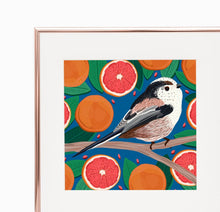 Load image into Gallery viewer, Long-tailed Tit and Grapefruit Print