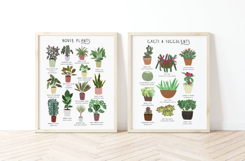 Set of 2 House Plant Prints