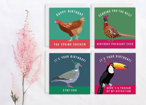 Set of 4 Funny Bird Birthday Cards