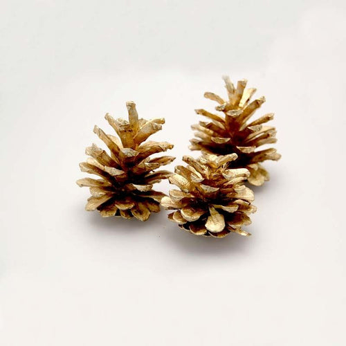 1kg Austriaca Gold Cones - Floral Christmas Wreath Decoration