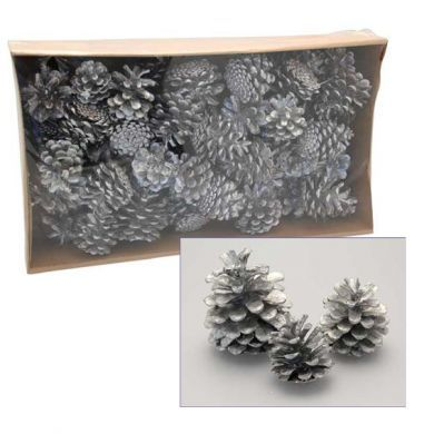 1kg Austriaca Silver Cones -  Floral Christmas Wreath Decoration