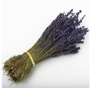35cm Natural Dried Lavender Bunch