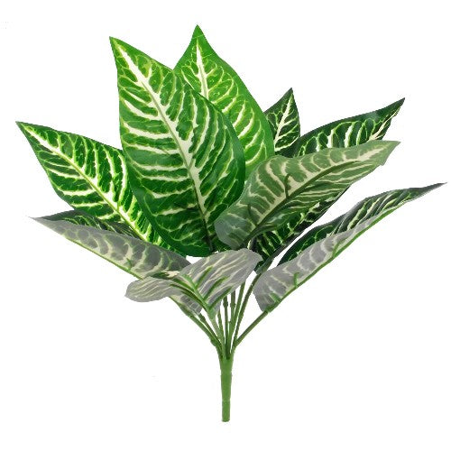 36cm Large Leaf Dieffenbachia Bush Green/White