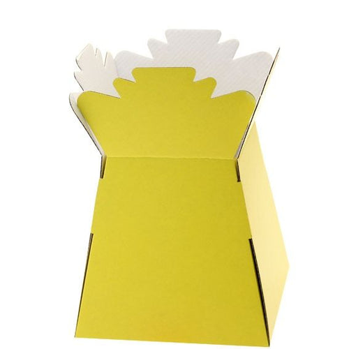 30 x Yellow Living Vase - Aqua Box