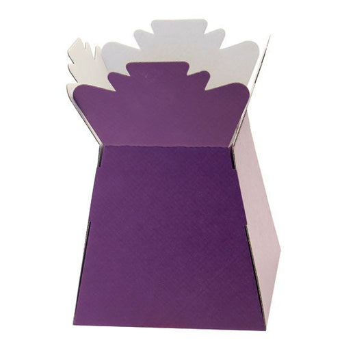 30 x Purple Living Vase - Aqua Box