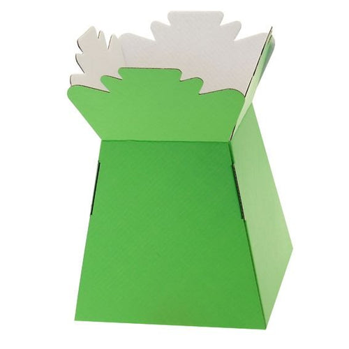 30 x Lime Green Living Vase - Aqua Box