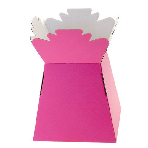 30 x Hot Pink Living Vase - Aqua Box