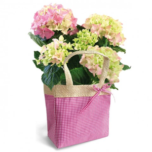 Pack of 10 -  Pink Gingham Vichy Plastic Lined Flower Bags
