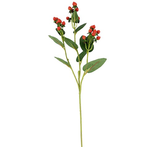 Red Hypericum Berry Spray