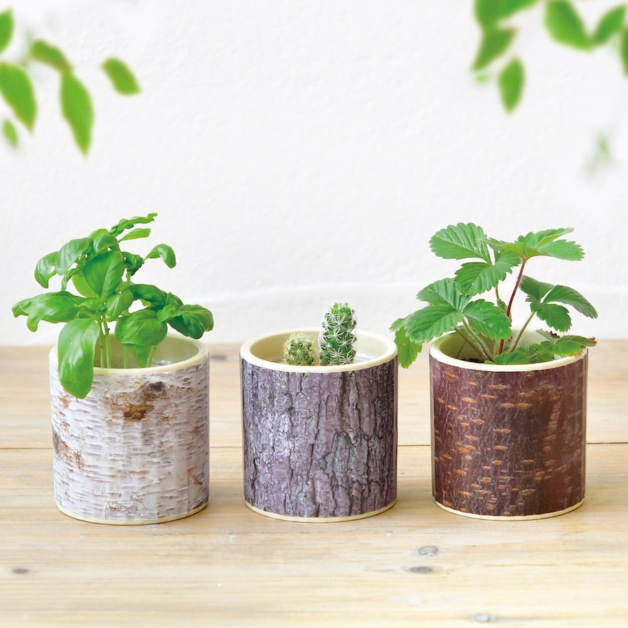 Stump Garden Deal - All 3 Styles!