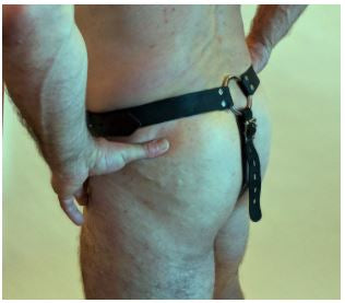 BUTT PLUG HARNESS