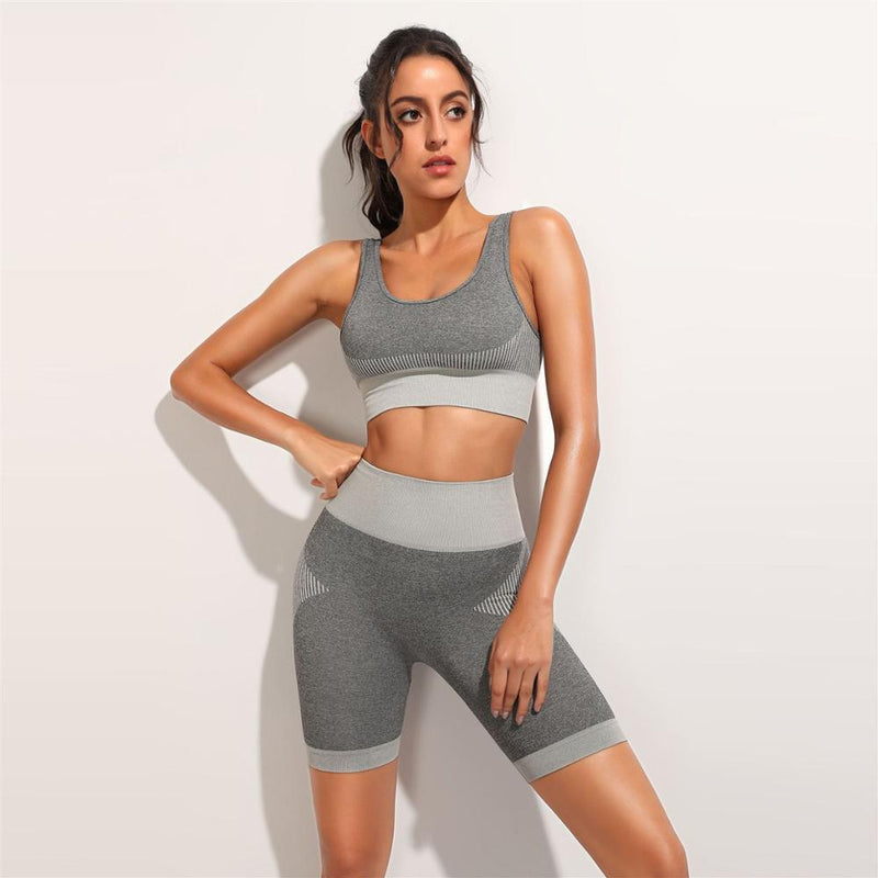 Seamless 2 Piece Crop Top & Cycling Shorts Set - Grey