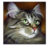 broderie diamant chat maine coon