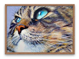 Broderie Diamant Chat Yeux Bleus Percants cadre