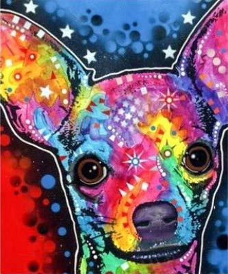 broderie diamant chihuahua colore