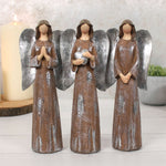 Angel 3 Pack Medium