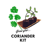 Grow Your Coriander: Organic Seeds & Kits - Mucky Knees Gift Boutique