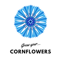 Grow Your Cornflowers: Seeds - Mucky Knees Gift Boutique