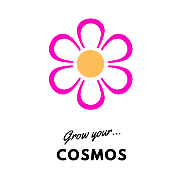 Grow Your Cosmos: Seeds - Mucky Knees Gift Boutique