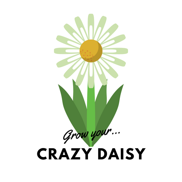 Grow Your Crazy Daisy: Seeds - Mucky Knees Gift Boutique