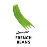 Grow Your French Beans: Organic Seeds - Mucky Knees Gift Boutique