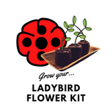 Grow Your Ladybird Flower: Seeds & Kits - Mucky Knees Gift Boutique