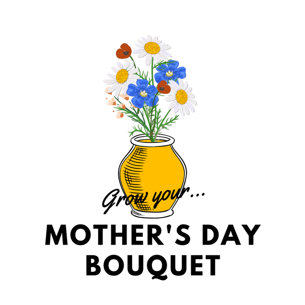 Grow Your Mother's Day Bouquet: Seeds - Mucky Knees Gift Boutique