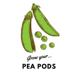 Grow Your Pea Pods: Organic Seeds - Mucky Knees Gift Boutique