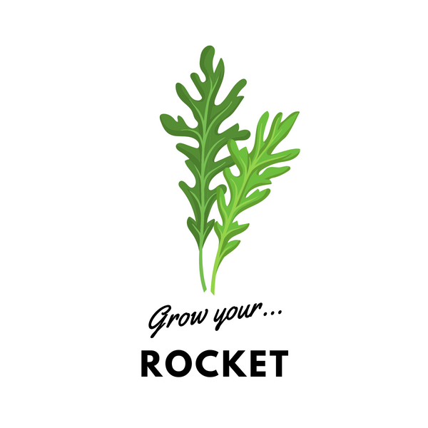 Grow Your Rocket: Organic Seeds - Mucky Knees Gift Boutique