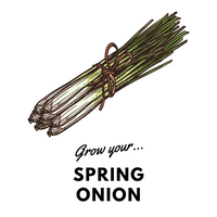 Grow Your Spring Onion: Organic Seeds - Mucky Knees Gift Boutique