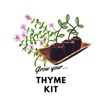 Grow Your Thyme: Organic Seeds - Mucky Knees Gift Boutique
